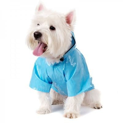 dog raincoat in kerry